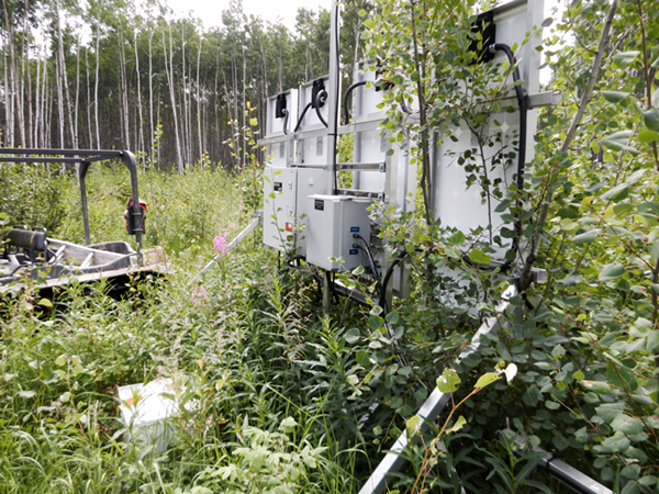 Remote Monitoring - Field Service - RTU Covered with Grass
