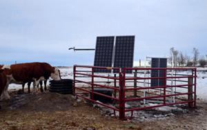 livestock monitoring water system