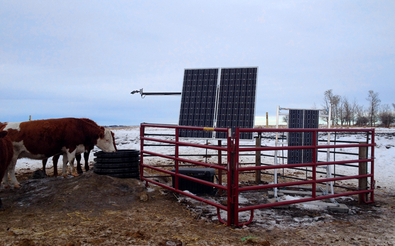 livestock monitoring water system