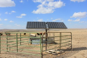 Solar Powered Water Pump Site